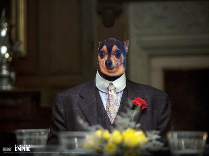 boardwalk-empire-dog