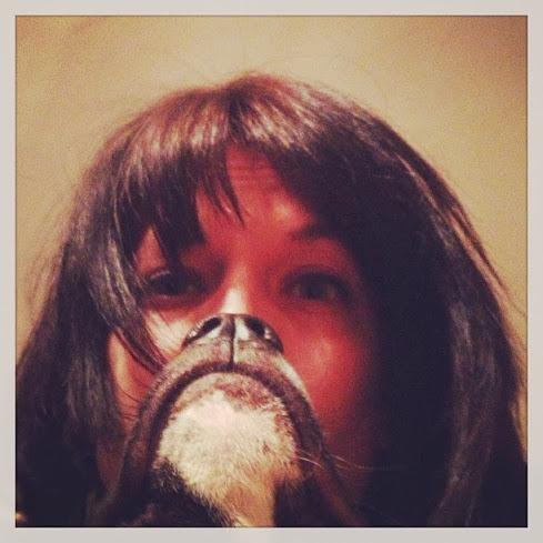 dog-bearding375