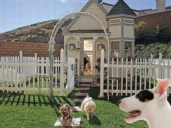 11 Doggie Mansions That Will Make You Re-Evaluate Your Life Choices