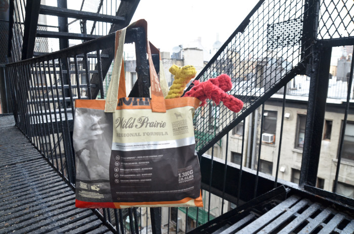 DIY dog food tote bag