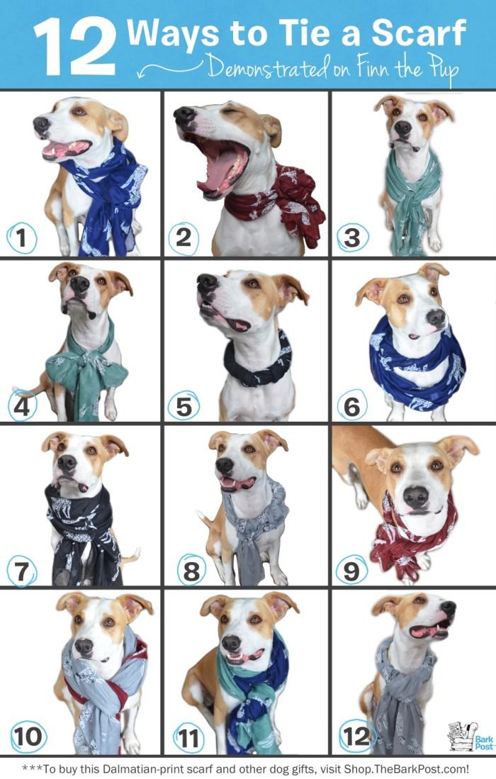 12_ways_to_wear_a_scarf_web