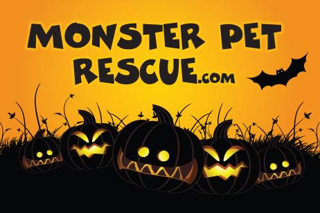dog rescue contest