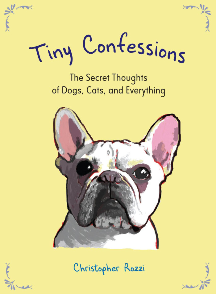 Tiny Confessions cover mag