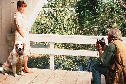 bridges-photo