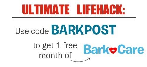 BarkCare Coupon Code