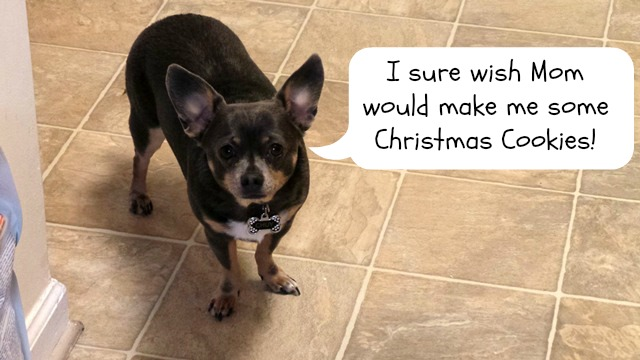 Irresistible Christmas Cookie Dog Treat Recipe - Chuy Chihuahua