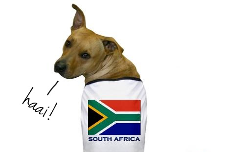 south africa dog