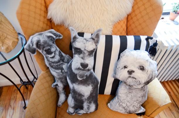 dog_pillows-8