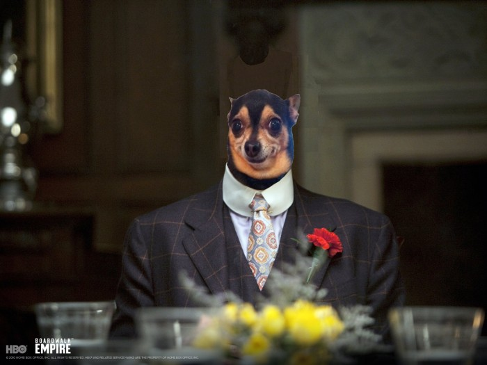 boardwalk-empire-dog