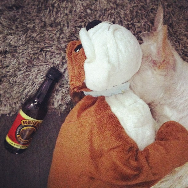 gabriela g hangover