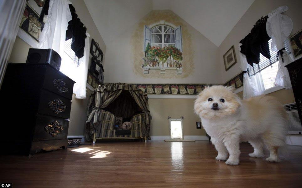 11 Luxury Dog Houses Worthy of MTV Cribs - Barkpost