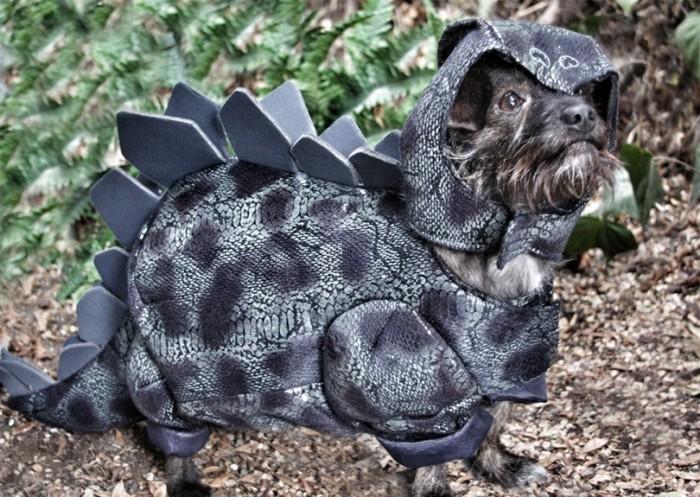 810_525338e246456-Stegosaurus_small