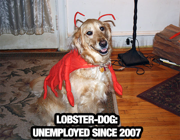 lobster-dog