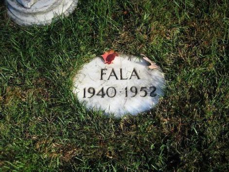 Fala_Grave2